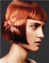hair coloring services with Aveda products in Oakland CA
